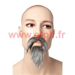 Moustache et Barbiche de Mandarin chinois