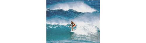 Hawaï-Caraïbes-Iles